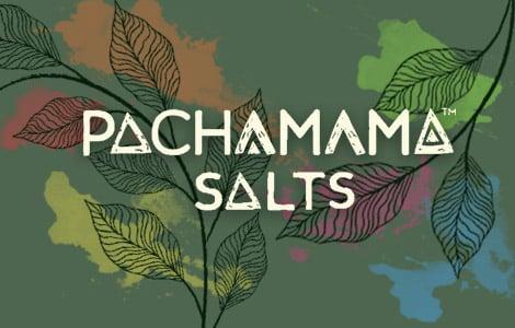 Pacha Mama 20mg Nic Salts